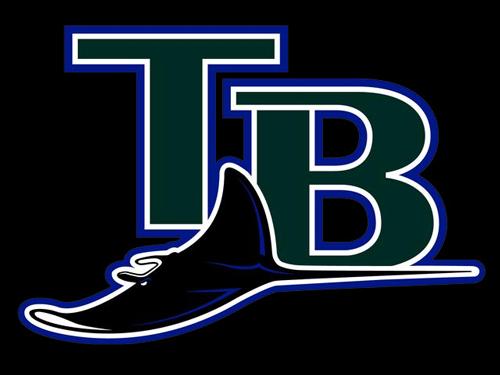 tampabay_devilrays_logo20copy3.jpg